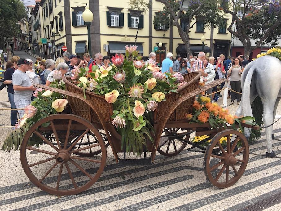 Arundel Travel Madeira Header