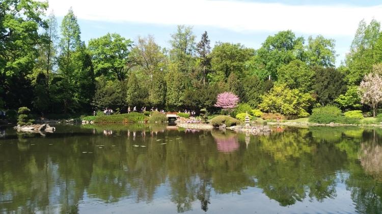 Japanese Garden Wroclaw Poland